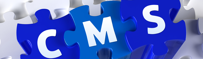 Website security issues from CMS platforms and third-party plugins