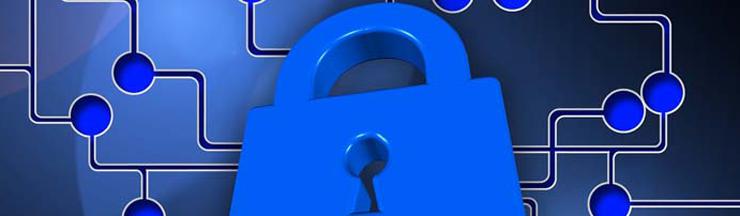 Cyber Security Survey 2016