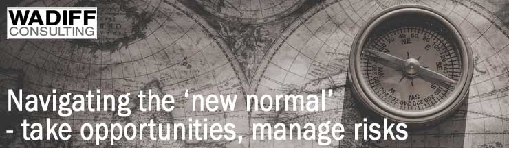 Navigating the new normal- take opportunities, manage risks WADIFF Consulting
